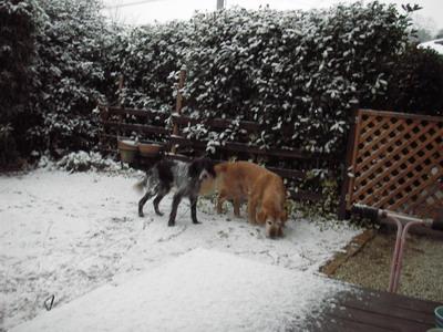 2009-01-12-1.jpg
