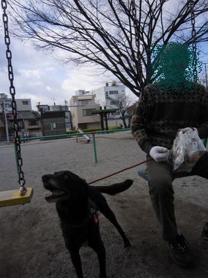 2010-01-30-2.jpg