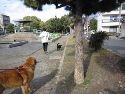 2010-01-30-3.jpg